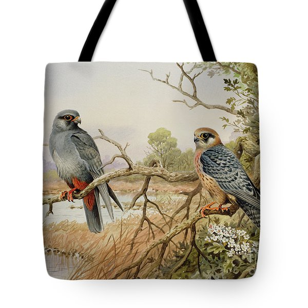 Red-footed Falcons Tote Bag by Carl Donner
