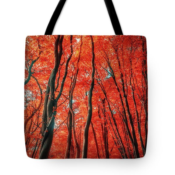 Red Forest Of Sunlight Tote Bag
