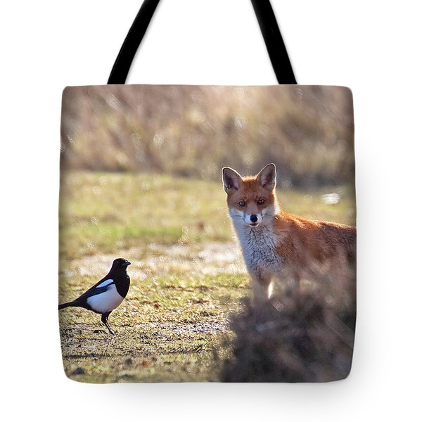 Red Fox And Magpie Tote Bag