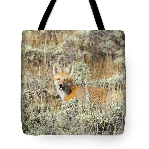 Red Fox In Sage Brush Tote Bag