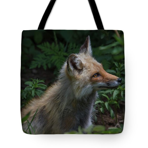 Red Fox In The Forest Tote Bag