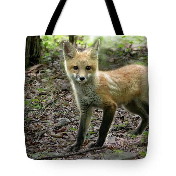 Red Fox Kit In The Woods Tote Bag