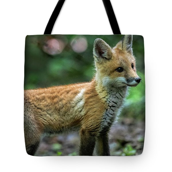 Red Fox Kit Looking For Danger Tote Bag