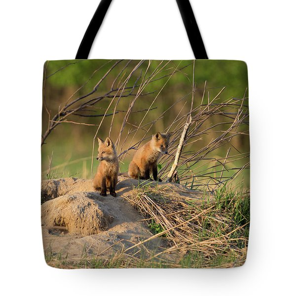 Red Fox Kits Keeping Watch Tote Bag