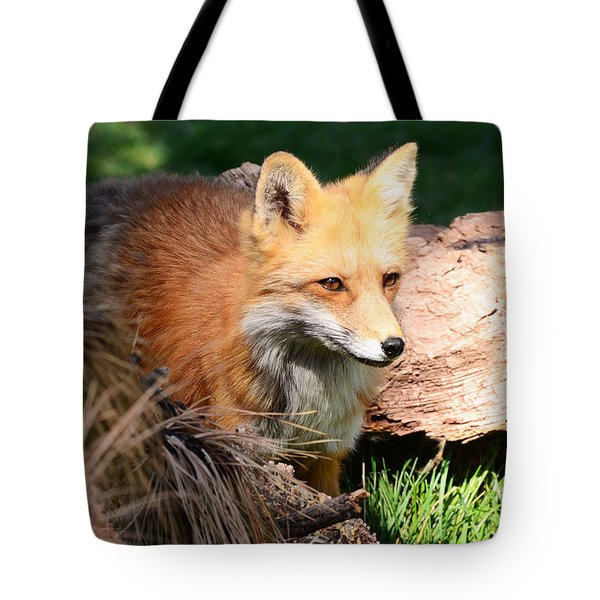 Red Fox On Patrol Tote Bag by Debby Pueschel