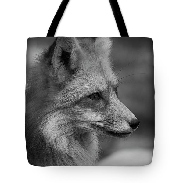 Red Fox Portrait In Black And White Tote Bag
