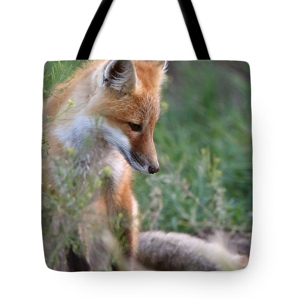 Red Fox Pup Outside Its Den Tote Bag by Mark Duffy