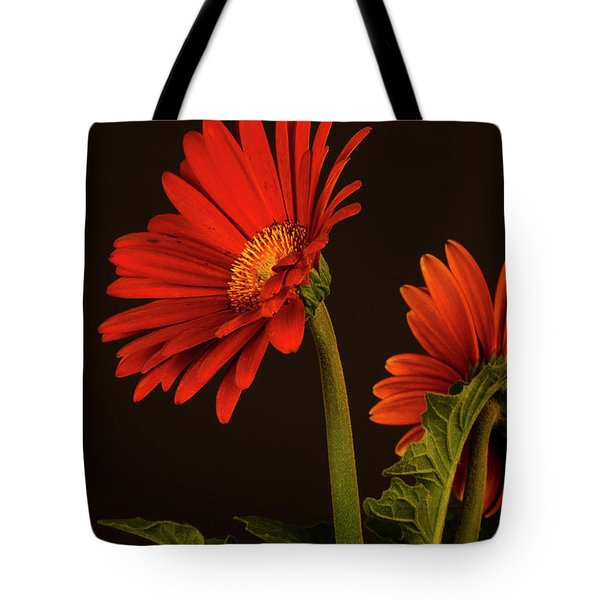 Red Gerbera Daisy 1 Tote Bag by Richard Rizzo
