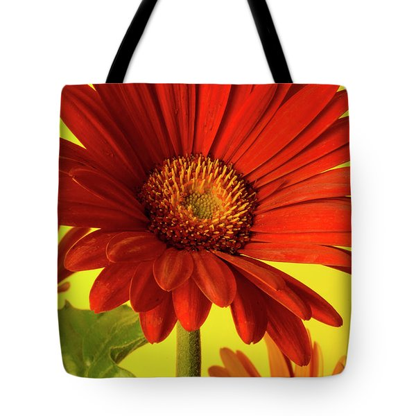 Red Gerbera Daisy 2 Tote Bag by Richard Rizzo