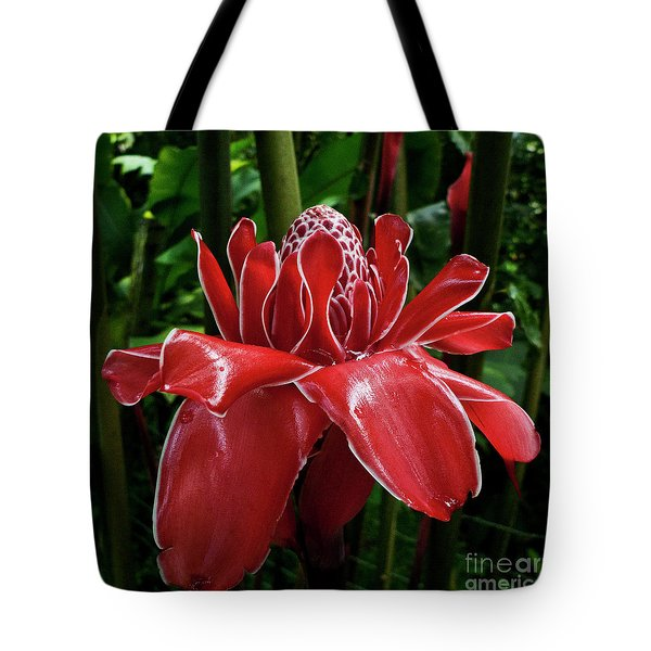 Red Ginger Lily Tote Bag by Heiko Koehrer-Wagner
