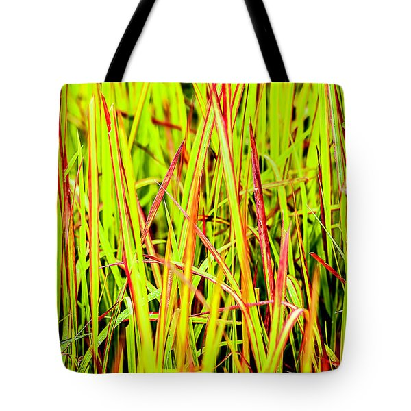Red Green And Yellow Grass Tote Bag