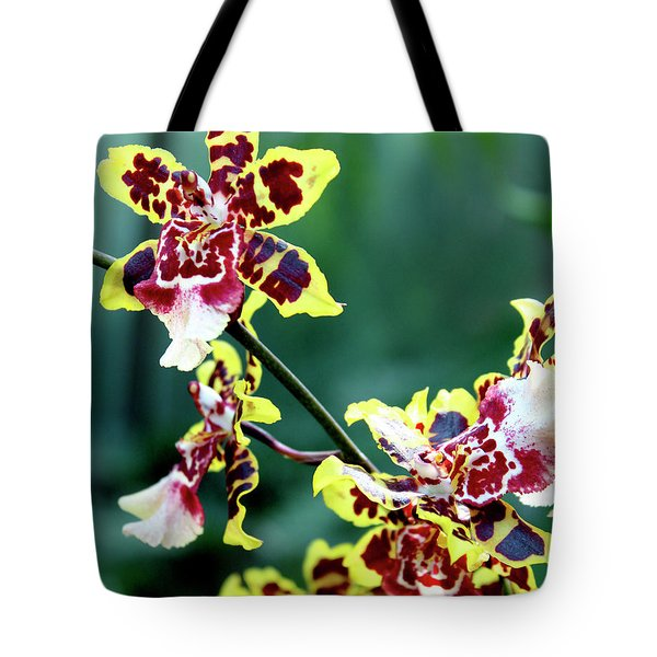 Striped Maroon And Yellow Orchid Tote Bag