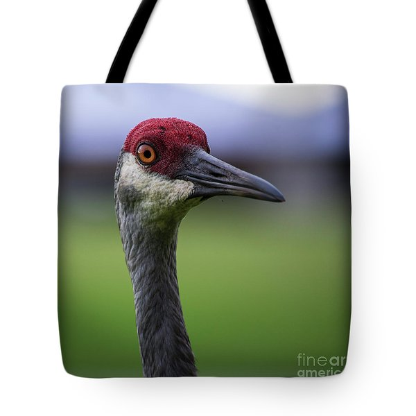 Red Head Bird Tote Bag