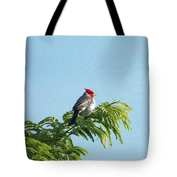 Red-headed Cardinal On A Branch Tote Bag
