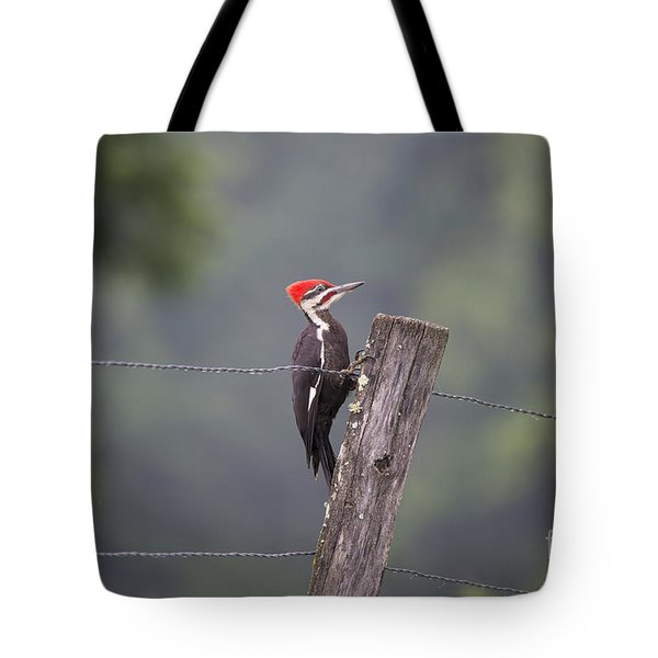 Red Headed Pileated Woodpecker Tote Bag by Nature Scapes Fine Art