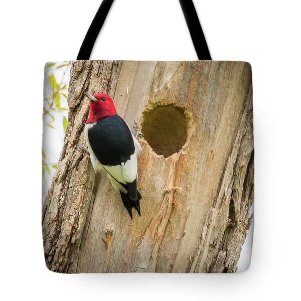 Tote Bag featuring the photograph Red-headed Woodpecker At Home by Ricky L Jones