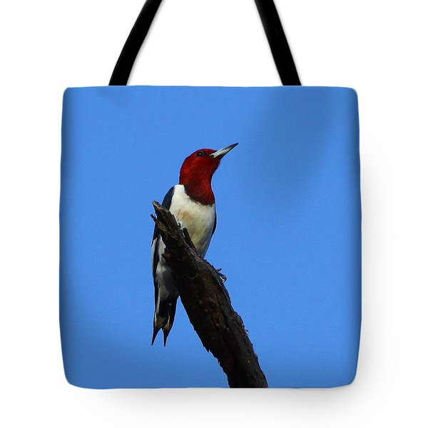 Red Headed Woodpecker On A Snag Tote Bag