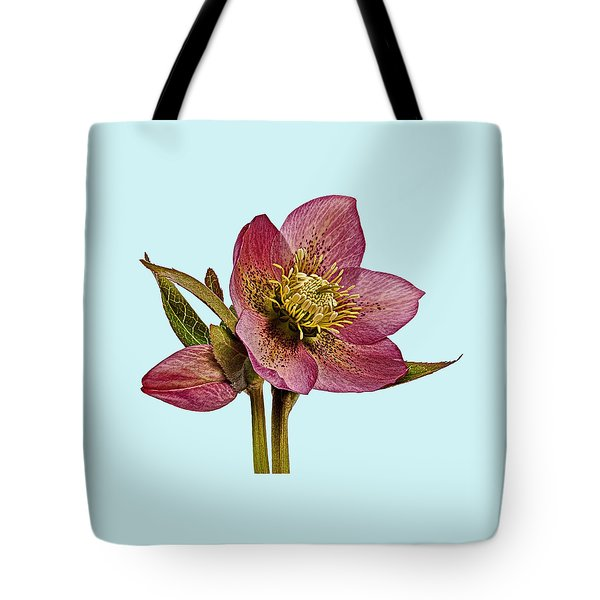 Red Hellebore Blue Background Tote Bag