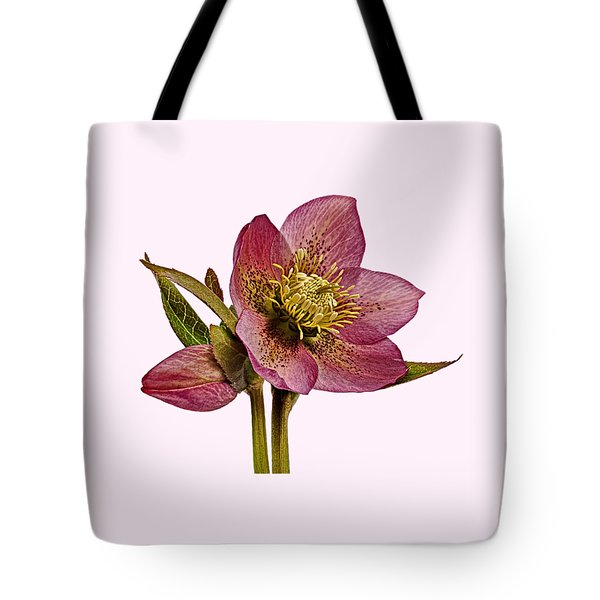 Tote Bag featuring the photograph Red Hellebore Transparent Background by Paul Gulliver