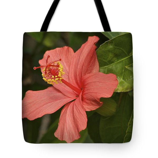 Red Hibiscus Tote Bag by Michael Peychich