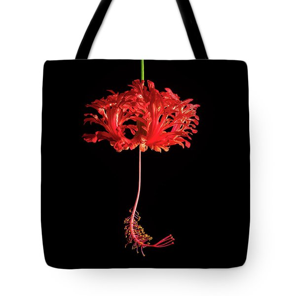 Red Hibiscus Schizopetalus On Black Tote Bag