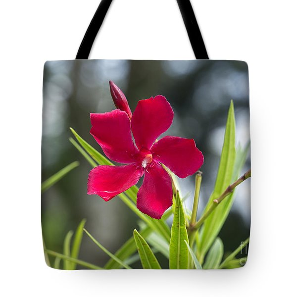 Red Hibiscus, Sri Lanka Tote Bag