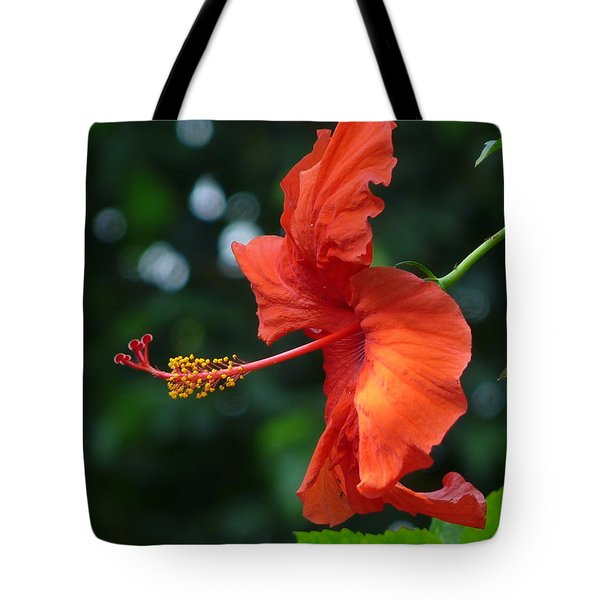 Red Hibiscus Tote Bag by Valerie Ornstein