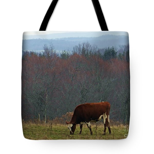 Red Holstein Of The Hills Tote Bag by Christian Mattison