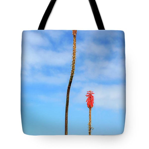 Tote Bag featuring the photograph Red Hot Pokers by James Eddy
