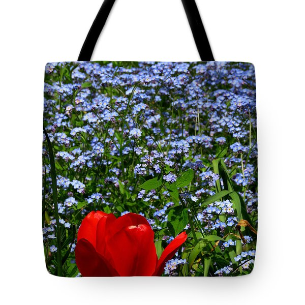 Red In Blue2 Tote Bag