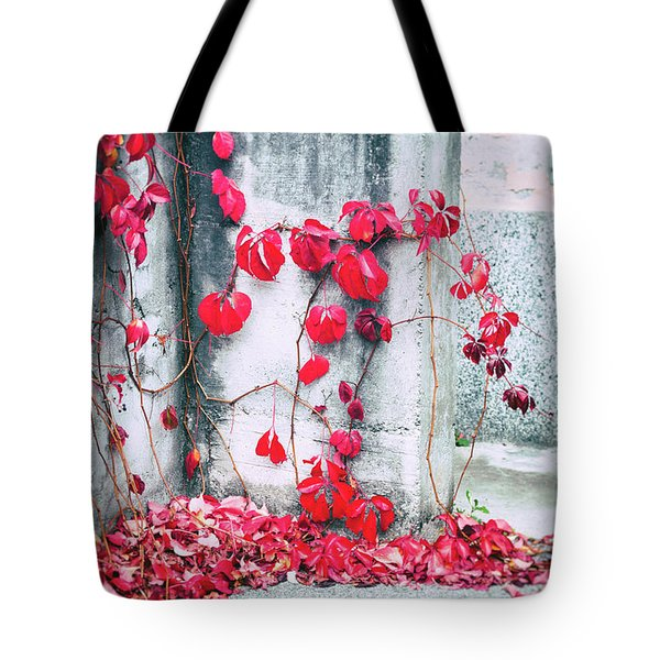 Tote Bag featuring the photograph Red Ivy Leaves by Silvia Ganora