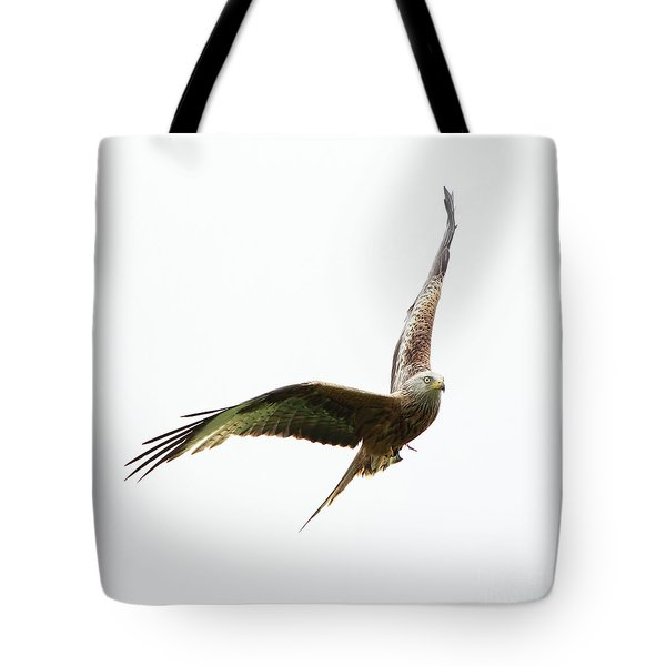 Tote Bag featuring the photograph Red Kite by Maria Gaellman