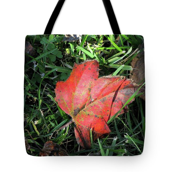 Red Leaf Against Green Grass Tote Bag by Michele Wilson