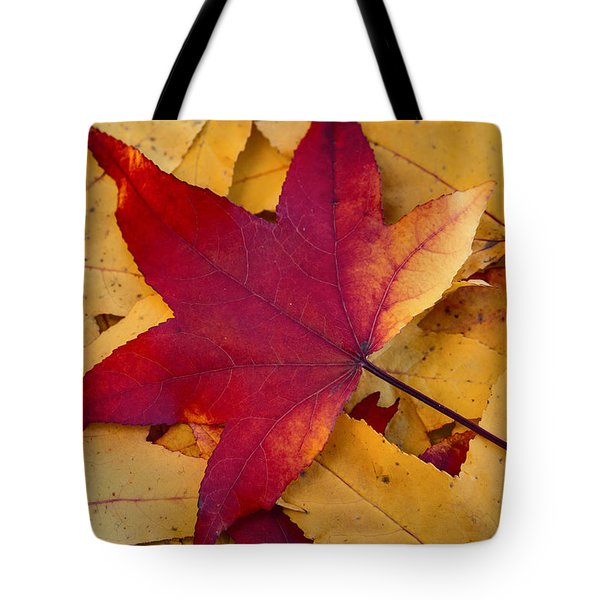 Tote Bag featuring the photograph Red Leaf by Chevy Fleet