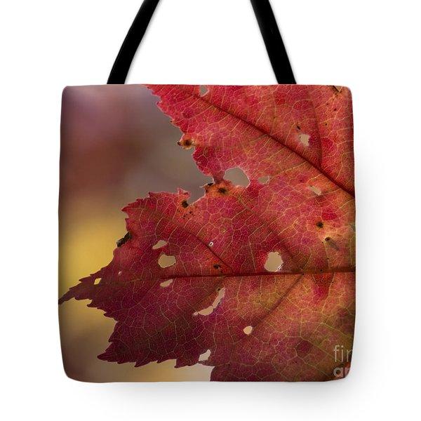 Red Leaf Tote Bag
