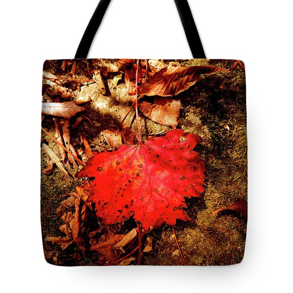Red Leaf Tote Bag by Meta Gatschenberger