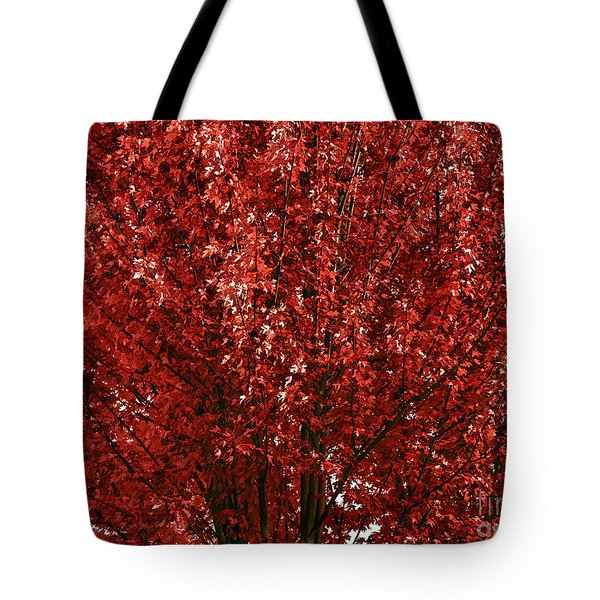 Red Leaf Tote Bag by Nancy Marie Ricketts