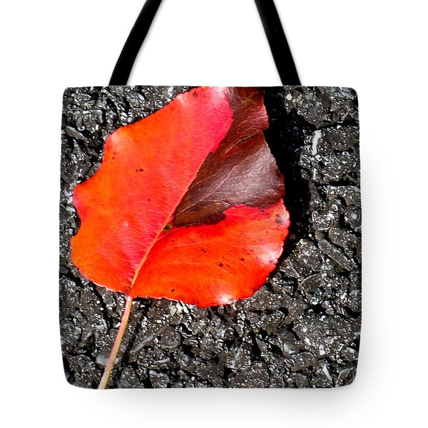 Red Leaf On Asphalt Tote Bag by Douglas Barnett