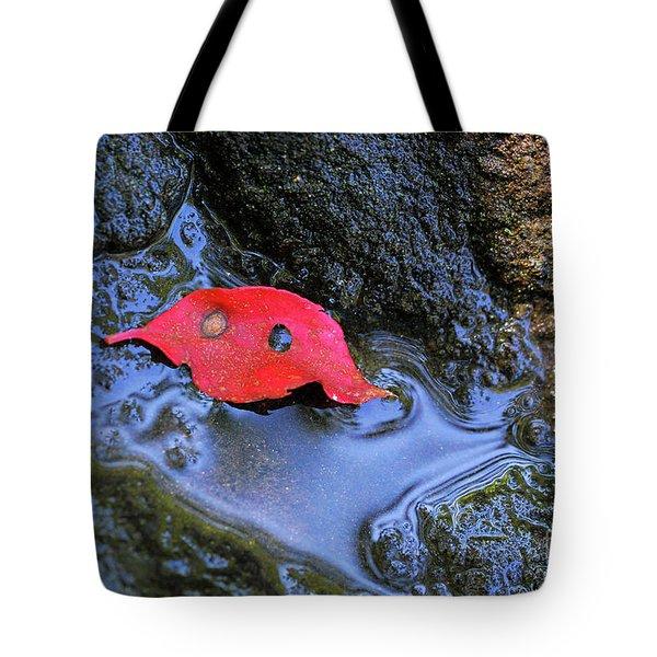 Red Leaf On Rock Tote Bag