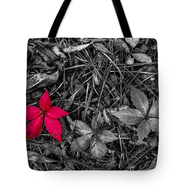 Tote Bag featuring the photograph Red Leaf by Randy Sylvia