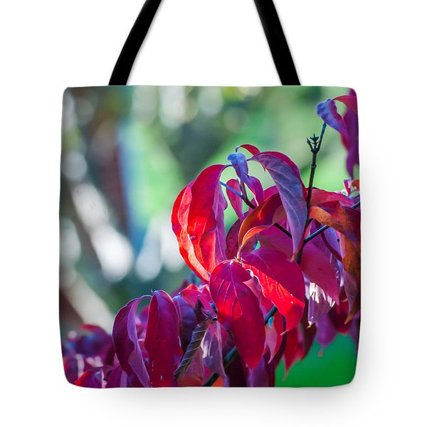 Tote Bag featuring the photograph Red Leaves - 9592 by G L Sarti