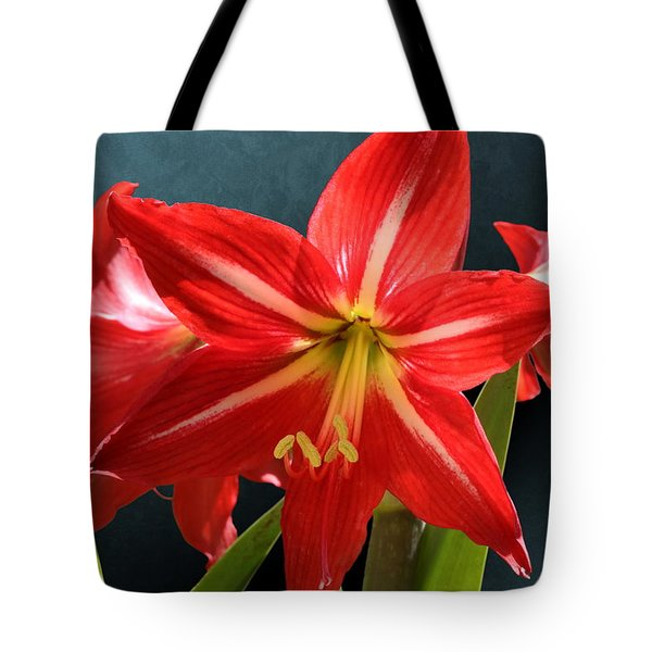 Red Lily Flower Trio Tote Bag