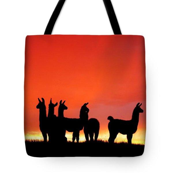 Red Llama Sunset 1 Tote Bag