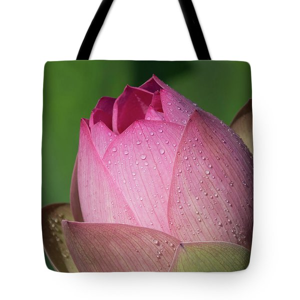Red Lotus Blossom Tote Bag