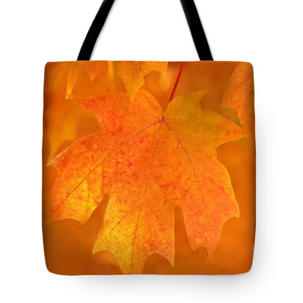 Red Maple Autumn Tote Bag by Marion Johnson