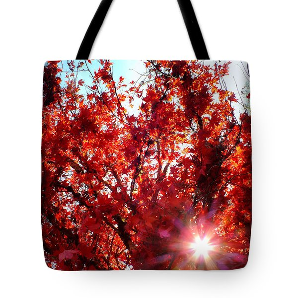 Red Maple Burst Tote Bag