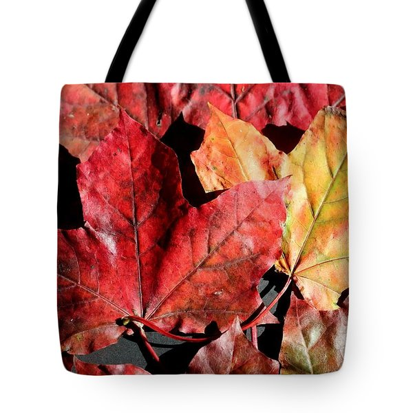 Red Maple Leaves Digital Painting Tote Bag by Barbara Griffin
