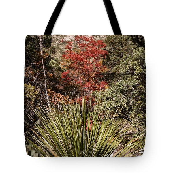 Tote Bag featuring the photograph Red by Melany Sarafis