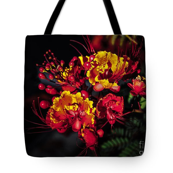 Red Mexican Bird Of Paradise Tote Bag