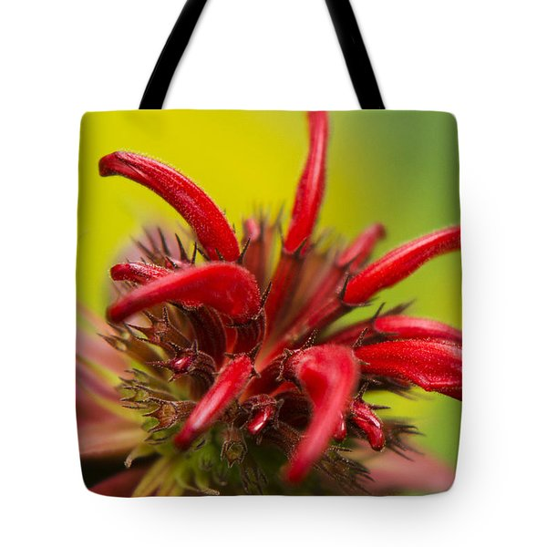 Red Monarda Flowers - Bee Balm Tote Bag by Christina Rollo